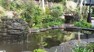 האגם שלנו - גן הפקאן